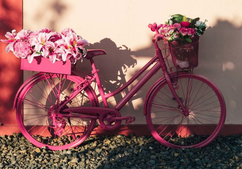bicicleta rosa com flores rosas
